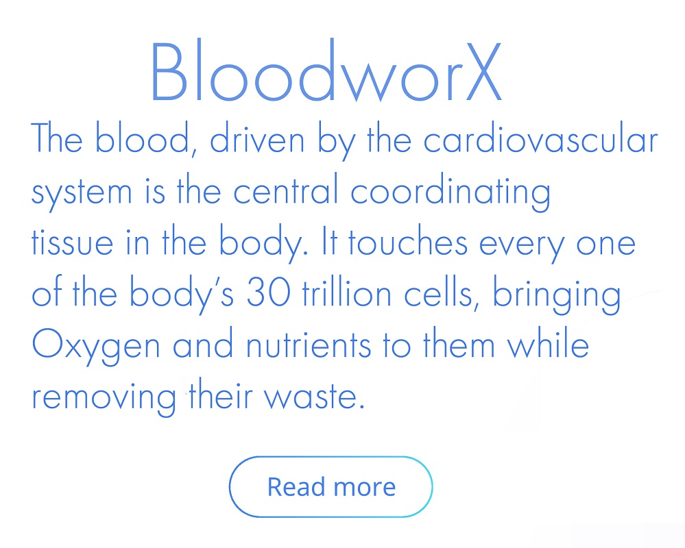 bloodworx text
